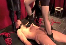 dominas trample and spank the gimp