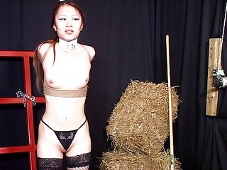 asian babe humilated by a couple