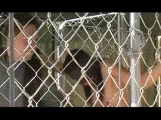 Slavegirl bound outdoors and punished