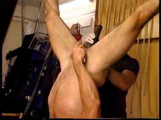 Jim Roberts suspended upside down stuffed with a big dildo and getting his testicles punished.