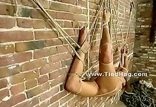 Cute blonde hanged upside down sex